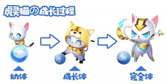 QQ飞车手游萌宠虎灵猫怎么得?10月19日魔法奇妙夜活动汇总[多图]图片2
