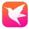 迅雷直播官网app