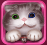 夜猫电视TV版 9.0 安卓版