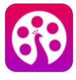 蜜汁影视app