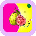 芭乐app最新污版
