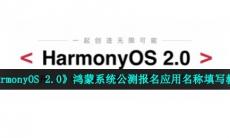 鸿蒙系统公测报名应用名称怎么填-HarmonyOS 2.0公测报名应用名称填写教程